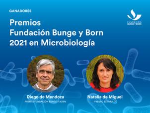 Premios Científicos Fundación Bunge y Born 2021 a la Microbiología