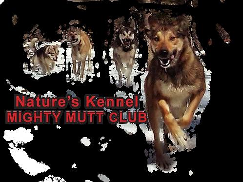 Race Team Dog Sponsorship (Mutt Club)