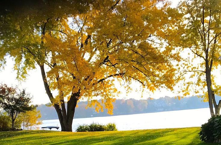 fall2019.jpg