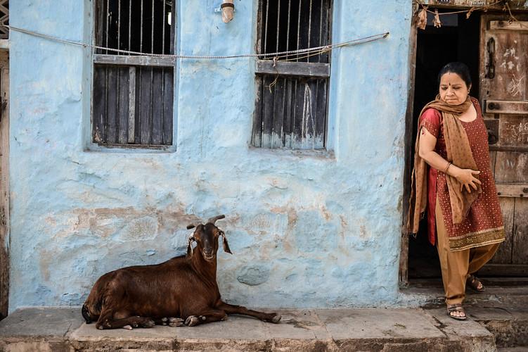 india (49).jpg