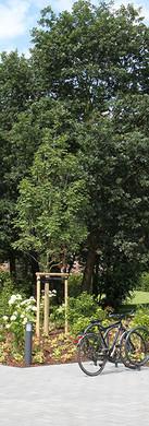 Kindertagesstätte Zauberwald, Jane-Addams-Weg, Korschenbroich