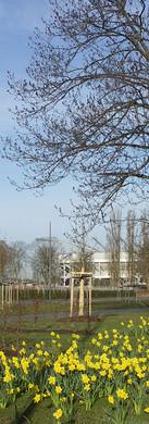 Denkmalbereich Nordpark, Mönchengladbach
