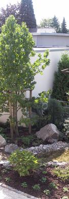 Hausgarten Grunewaldstraße, Viersen