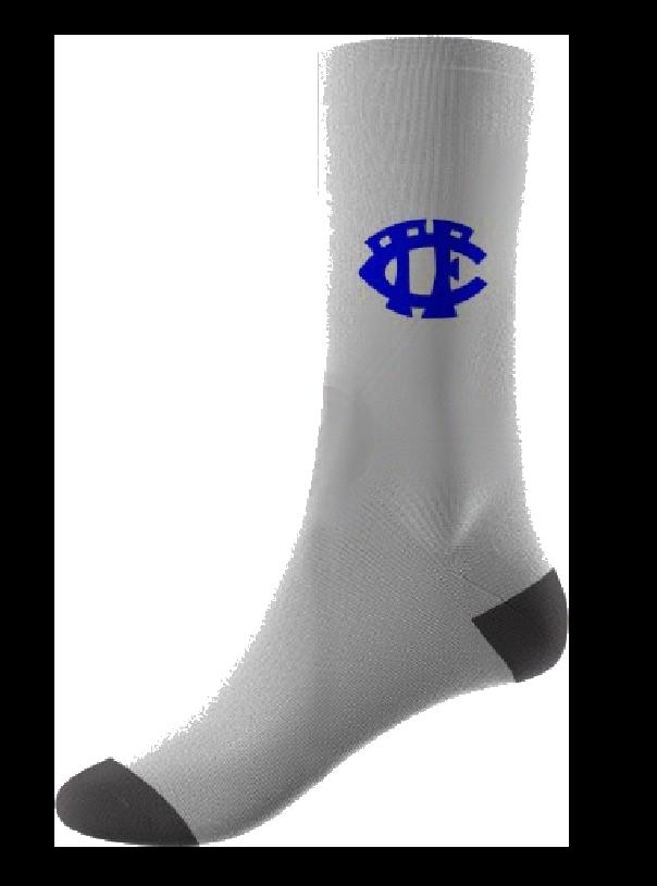 Sports-Sock-White trans.png
