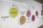 Organisational design.png