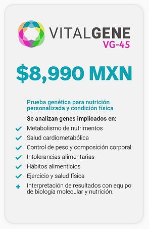02vg_Web_maquetado-15.png