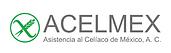 acelmex-05.png