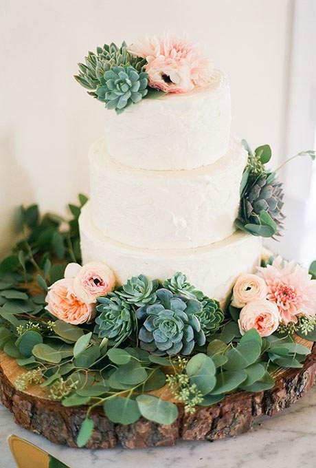 Succulent adorned cake