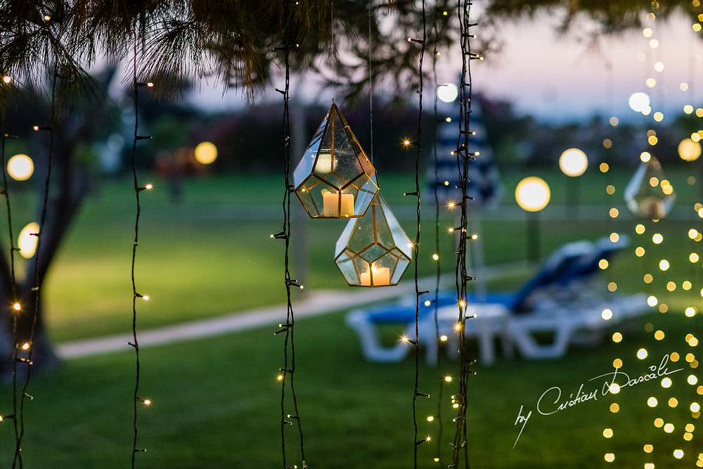 Lanterns hanging from the trees