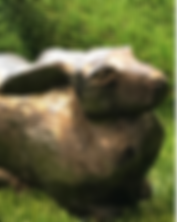 Skärmklipp 2019-06-10 21.57.47.png