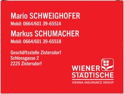 LOGO Schweighofer_Schumacher_100x75cm_4c