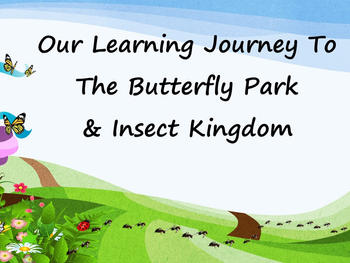 Outing to Butterfly Park & Insect Kingdom