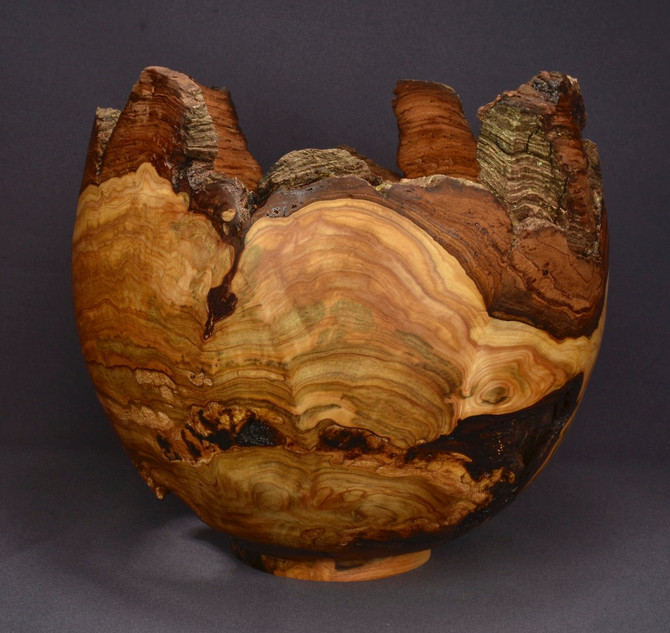 Unusual White Cedar Burl Bowl (Finished)