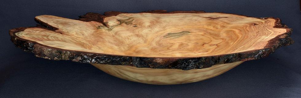 Large White Cedar Burl Bowl (21WS13)