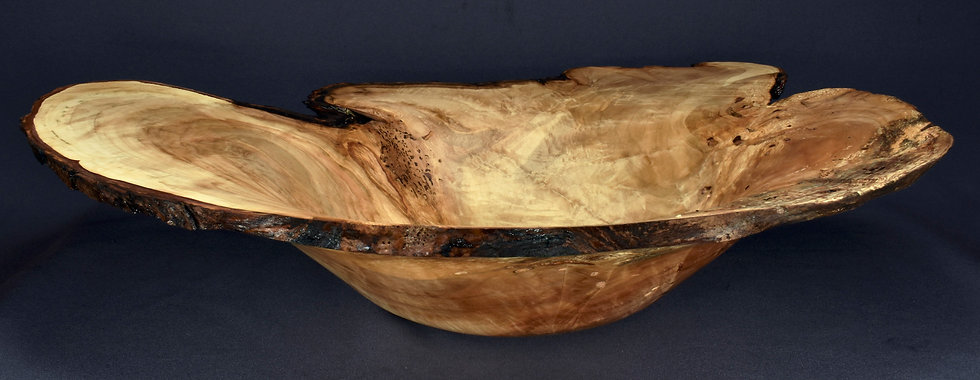 Rustic Silver Maple Burl Bowl (20SF30)