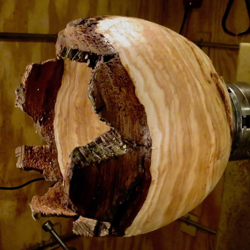 Cedar Burl Bowl on Lathe
