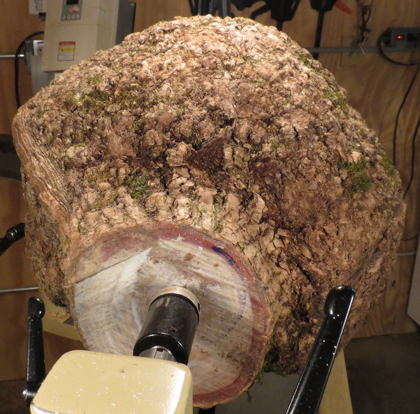 Tailstock View of Burl on Lathe