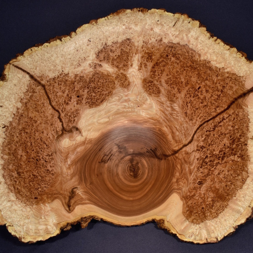 Sanded and Oiled Bowl