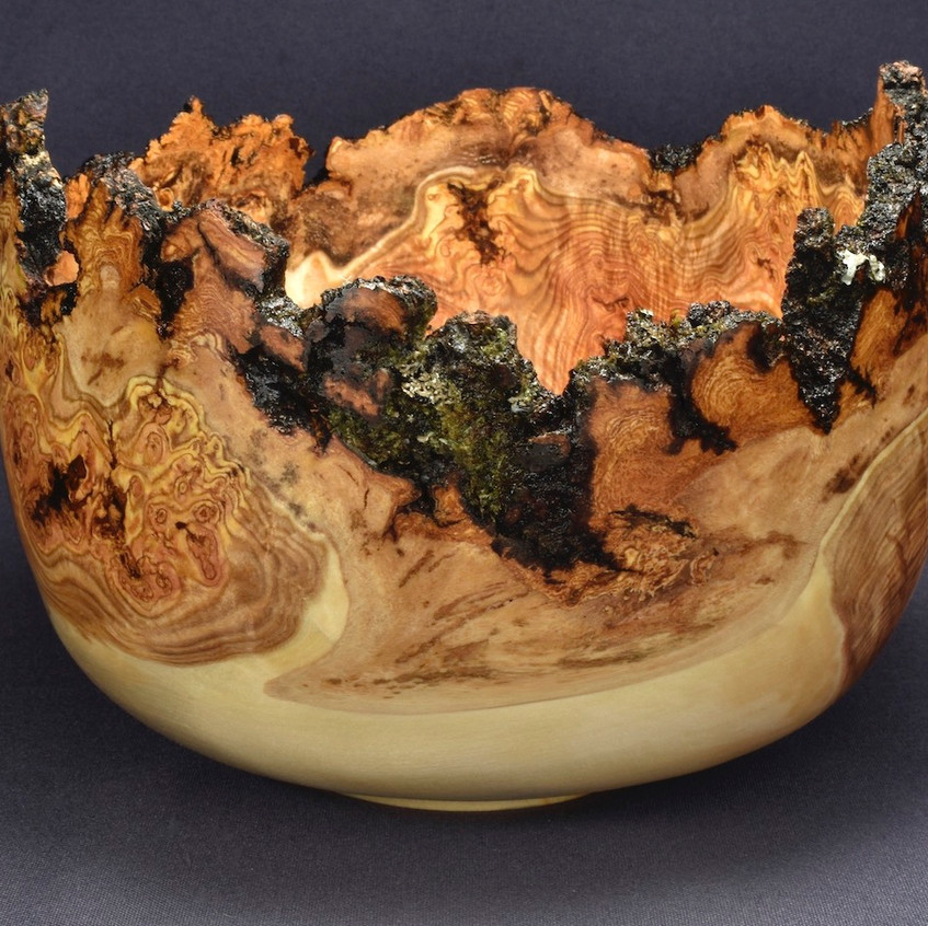 Aspen Burl Bowl (20WS23)