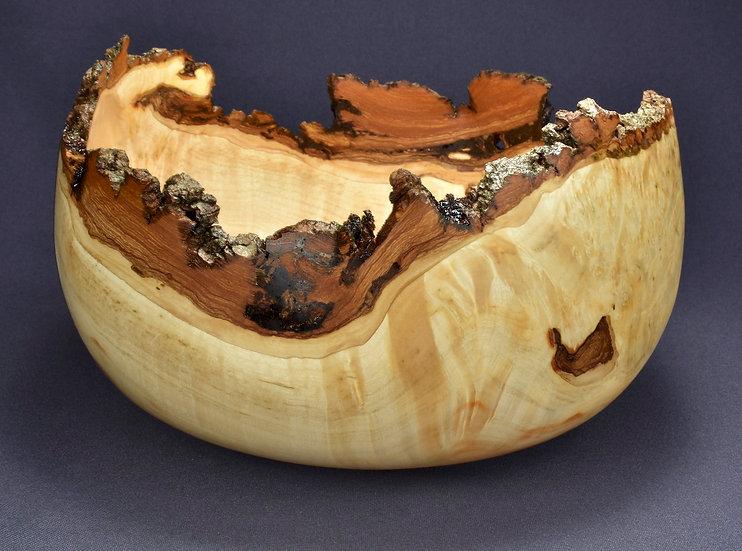 Box Elder Burl Bowl (20SF14) SOLD