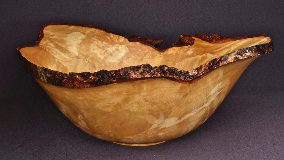 Curly Birch Burl Bowl (20WS19)