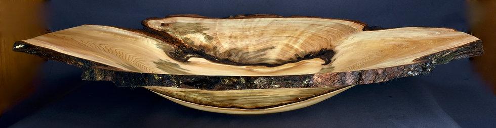 Large White Cedar Burl Bowl (21WS14)