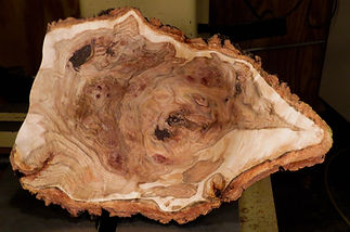 Aspen Burl Bowl freshly turned