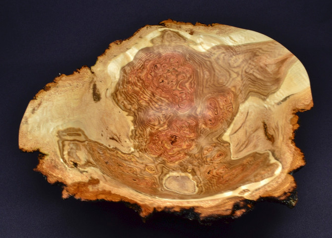 Aspen Burl Bowl (first of many new ones)