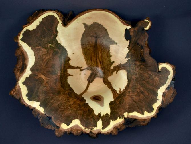 Spooky Figure Inside a Sugar Maple Burl