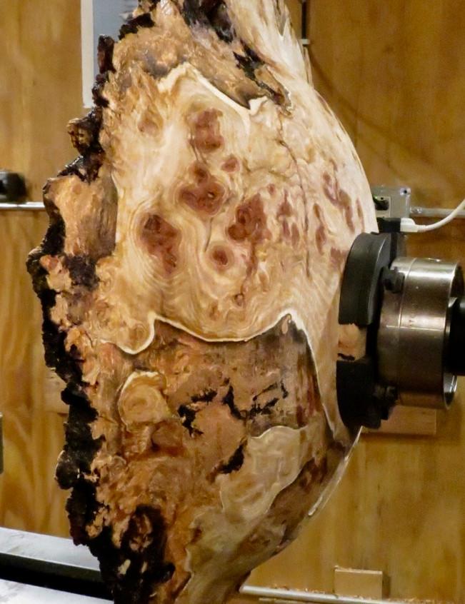 Aspen Burl Bowl
