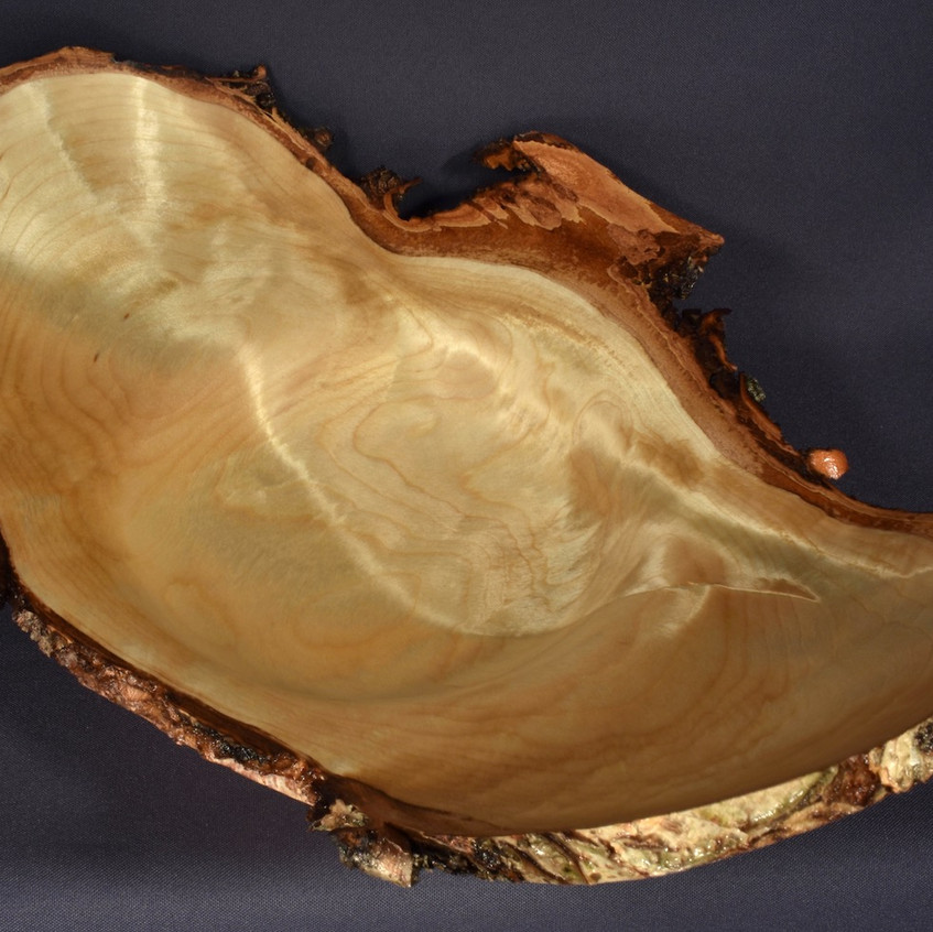 Birch Burl with Chatoyance