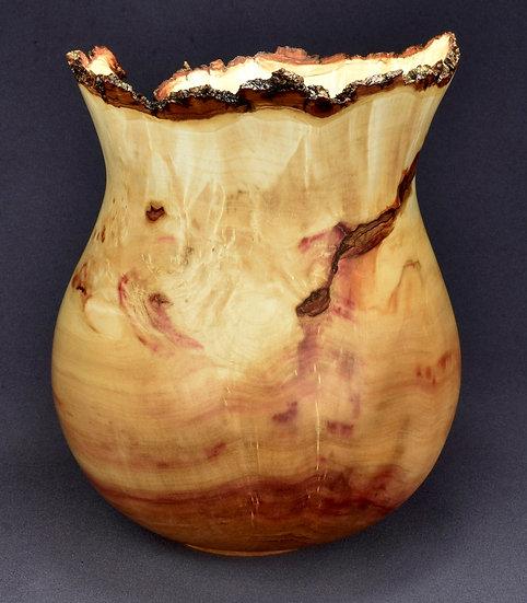 Elegant Box Elder Burl Bowl (20SF11) SOLD