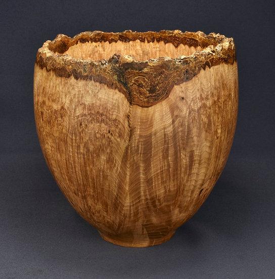 Elegant Black Ash Burl Bowl (21SF7)