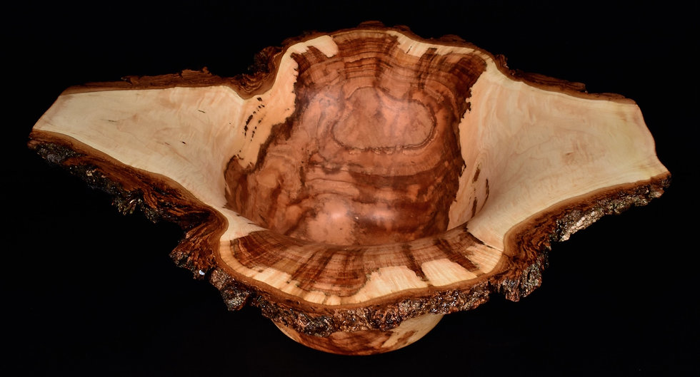 Spalted Sugar Maple Burl Bowl (17SF57) SOLD