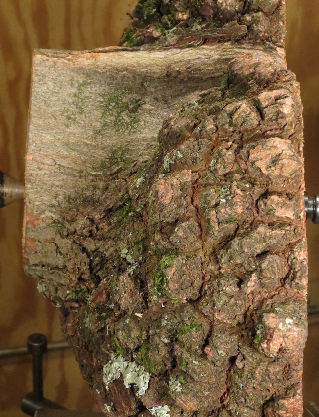 Another view of burl on lathe