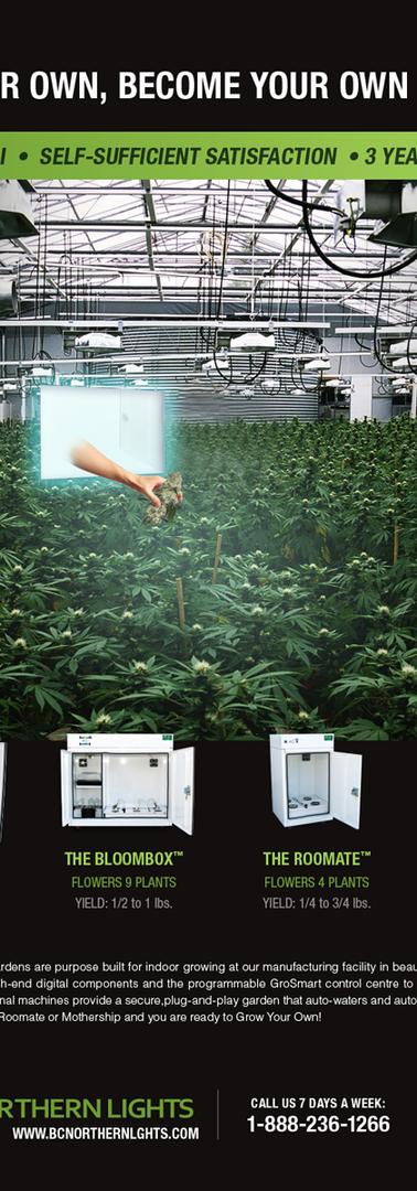 Cannabis grow box advertisement