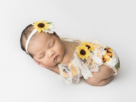Roseville Newborn Photographer, Studio Newborn Session