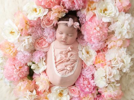 Roseville Newborn Photographer