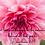 Thumbnail: Let Love Motivate (1 Cor. 16:14)