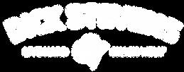 DS logo-AllWhite.png