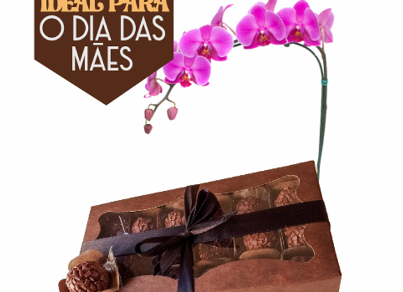 18 Brigadeiros Belga + Orquídea