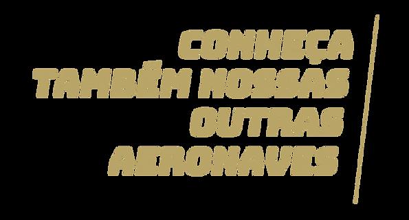 CONHEÇA.png