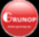 Logo Rojo Web sin fondo.png