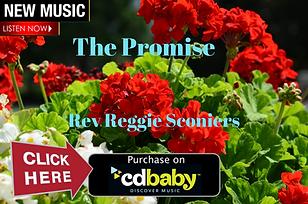 reggie sconiers new music image.png
