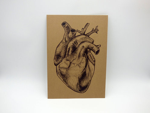 Vintage style Anatomical heart print on recycled paper