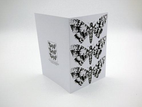 Triple Death's Head Moth Greeting Card