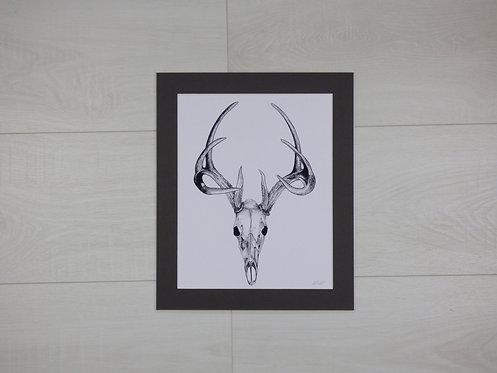 Deer Skull print
