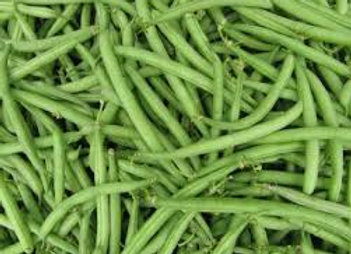 Haricots verts fins