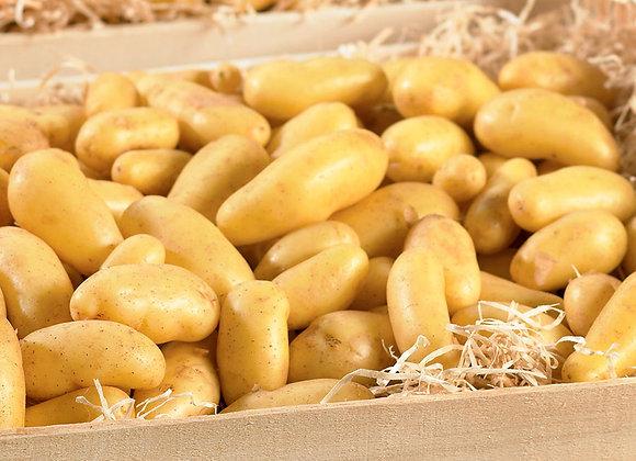 Pommes de terre (délicatesse)