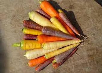carottes couleur (bio)